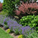 5 Things to Consider When Planning Your Landscaping Project