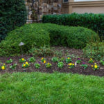 landscaping company in sykesville md, construction, pools, masonry
