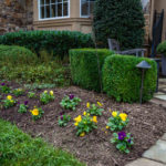 landscaping company in west friendship md, construction, pools, masonry